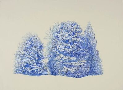 Stacey Cushner, 'Intangible Aspects of the Forest ', 2015