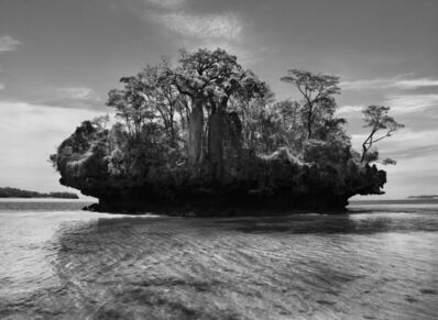 Sebastião Salgado, 'Genesis: Baobab Trees on a Mushroom Island in the Bay of Moramba, Madagascar', 2010