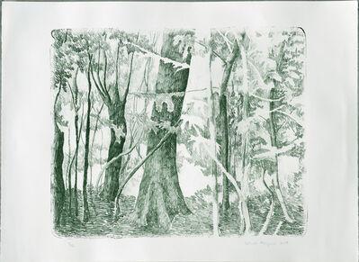 Gabriela Albergaria, 'Margens do Rio Branco (Amazônia)', 2018