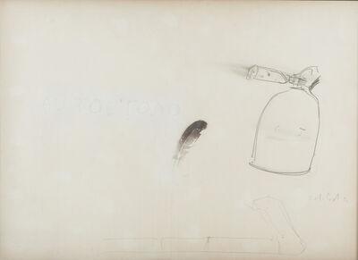 Pier Paolo Calzolari, 'AUTOCTONO', 1972