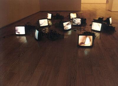 Zhang Peili, 'An Uncertain Pleasure', 1996