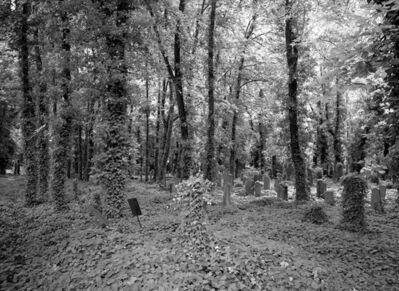 Doug Hall, 'The Jewish Cemetery, Žižkov, Prague', 2016