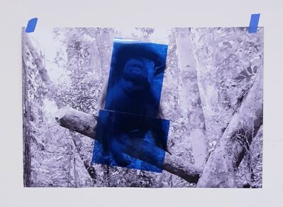 Oscar Figueroa, 'Blue Orang Utan', 2020