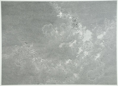 Daniel Zeller, 'Polymorphic Reservoir', 2013