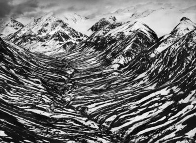 Sebastião Salgado, 'Big Horn Creek, Kluane National Park, Canada, 2011', 2011