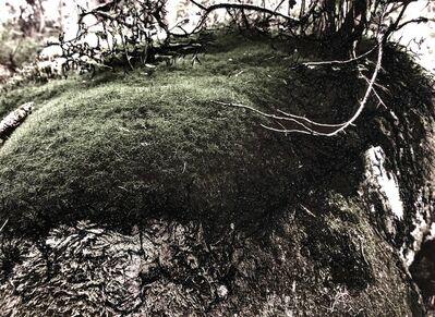 liliana gassiot, 'En attendant la neige #1', 2018