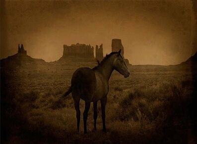 Jack Spencer, 'Mustang/Monument Valley, Utah', 2007