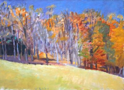Wolf Kahn, 'Fall Woods', 1986