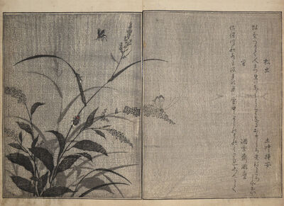 Kitagawa Utamaro, 'Tree Cricket and Firefly', 1788