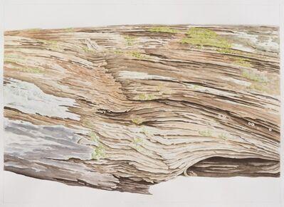 Sean Cavanaugh, 'Peeling Away', 2015