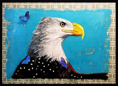 SN, 'American Eagle', 2019