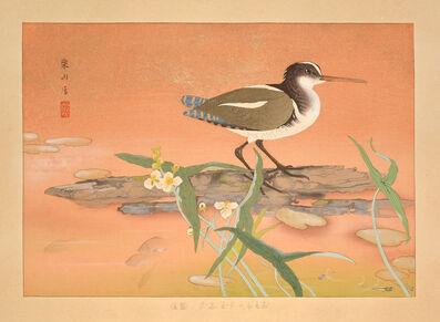 Tsuchiya Rakusan, 'Arrowhead and Painted Snipe (Mid Summer)', 1930
