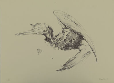 Bryan Kneale, 'Cormorant II', c.2010