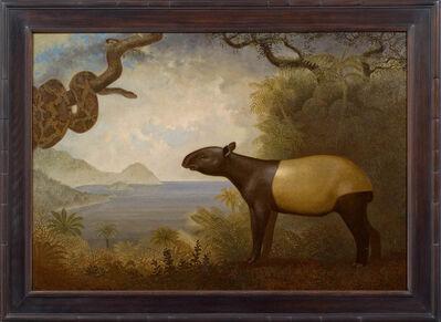 Peter Zokosky, 'Tapir and Snake', 2008