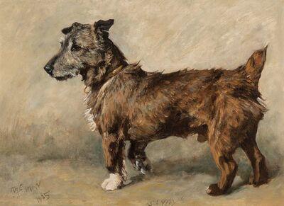 John Emms, 'Sandy', 1905