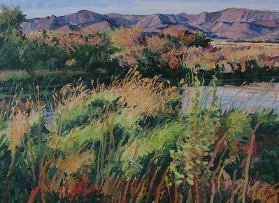 Sheila Gardner, 'Silver Creek Tangle'