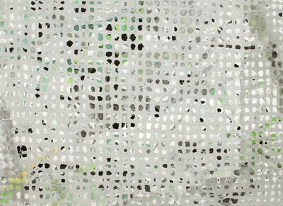 Takako AZAMI, 'gray net 170301', 2017