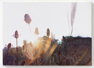 Vibeke Slyngstad, 'Shuafat V', 2019