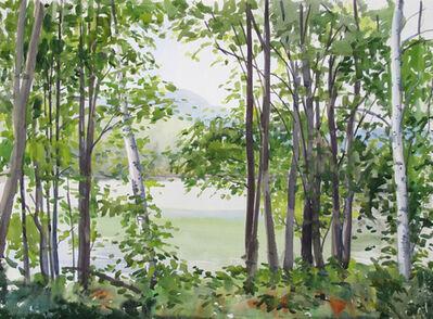 Elissa Gore, 'Summer Lake 5', 2014