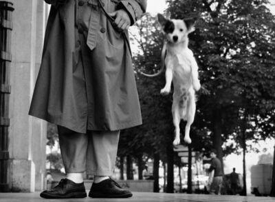 Elliott Erwitt, 'Paris, France (Dog Jumping)', 1989