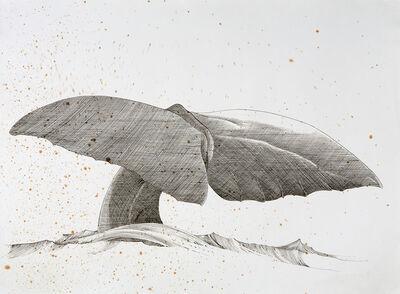 Scott Kelley, 'Flukes, Sperm Whale', 2014