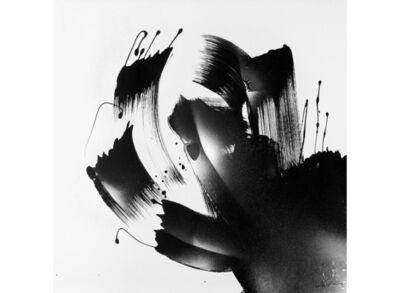 Yves Hasselmann, 'Insolite #71', 2010