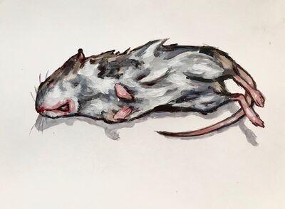 Elly Smallwood, 'Rat', 2018