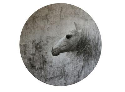 Xue Song 雪松, 'Horse Series No. 1', 2011