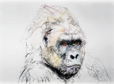 Dave White, 'Gorilla'