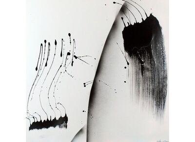 Yves Hasselmann, 'Insolite #17 ', 2009