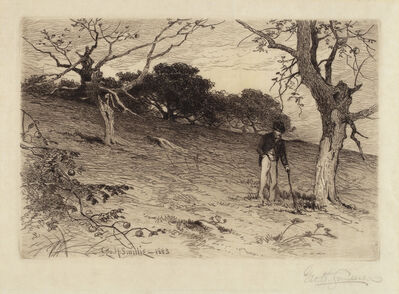 George Henry Smillie, 'Old New England Orchard', 1883