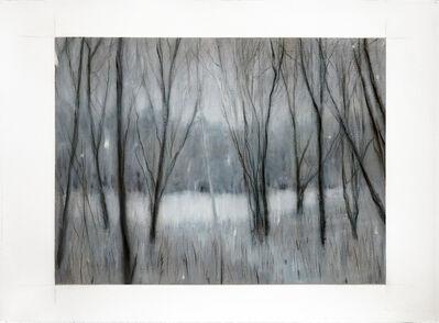 Adam Straus, 'Winter: Indian Island Park', 2013