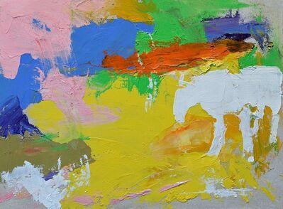 Rocky Hawkins, 'Vanishing Horse', 2019
