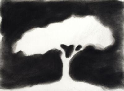 David Nash, 'Silhouette Tree', 2018