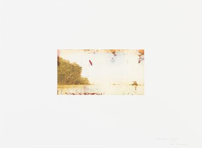Hiro Yokose, 'WOP 2-00638', 2015