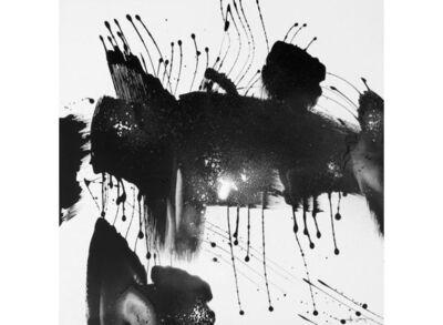 Yves Hasselmann, 'Insolite #16 - Hesitation ', 2009