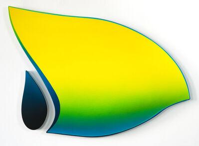 Jan Kaláb, 'Yellow Fin', 2019