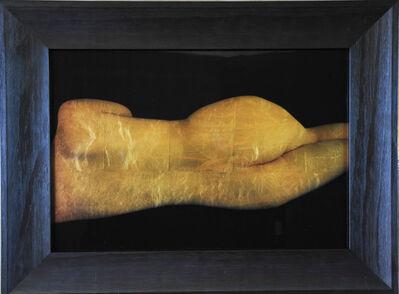 Kate Breakey, 'Reclining Nude', 2014