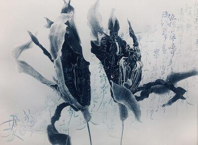 Chu Chu  儲楚, 'Gardenia', 2011-2019