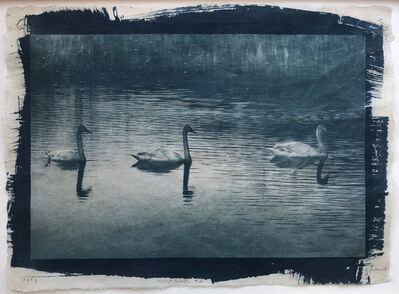 Randy Richmond, 'Night Swans #2', 2019