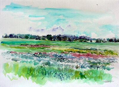 Rebecca Perehudoff, 'Green Field', 1997