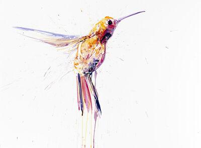 Dave White, 'Humming Bird I Small Pink'