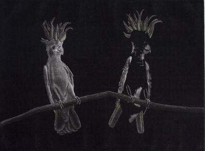 Graeme Peebles, 'Australian Parrots - Sulphur Crested Cockatoo', 1990