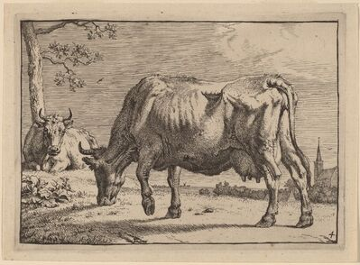 Paulus Potter, 'Grazing Cow', 1650