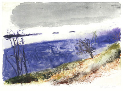 Wolf Kahn, 'FROM MARTIN'S POINT, ME I', 2010