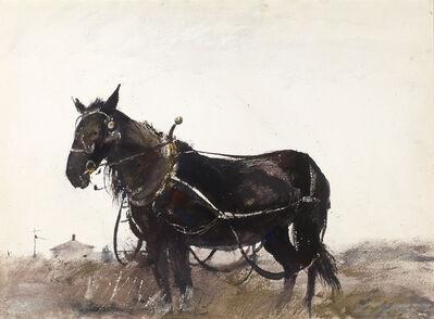 Andrew Wyeth, 'Farm Horse', 1954