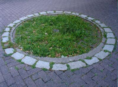 Tue Greenfort, 'Citygarden', 2005
