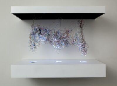 Daniel Canogar, 'Hipocampo 2', 2010