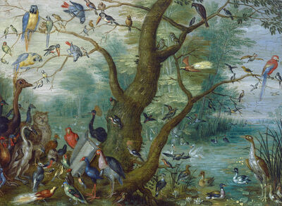 Circle of Jan van Kessel I, 'Concert of Birds', 1660/1670