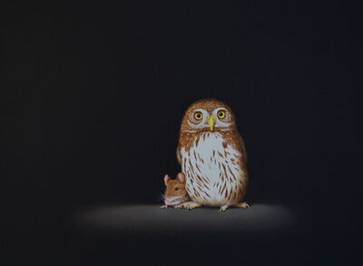 Isabelle du Toit, 'Truce: Pygmy Owl & Mouse', 2019